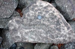 Pockmarks scoured into the surface of a diabase boulder in Ringing Rocks boulder field