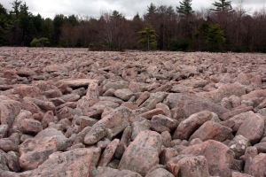 Hickory Run boulder field, Hickory Run State Park Pennsylvania